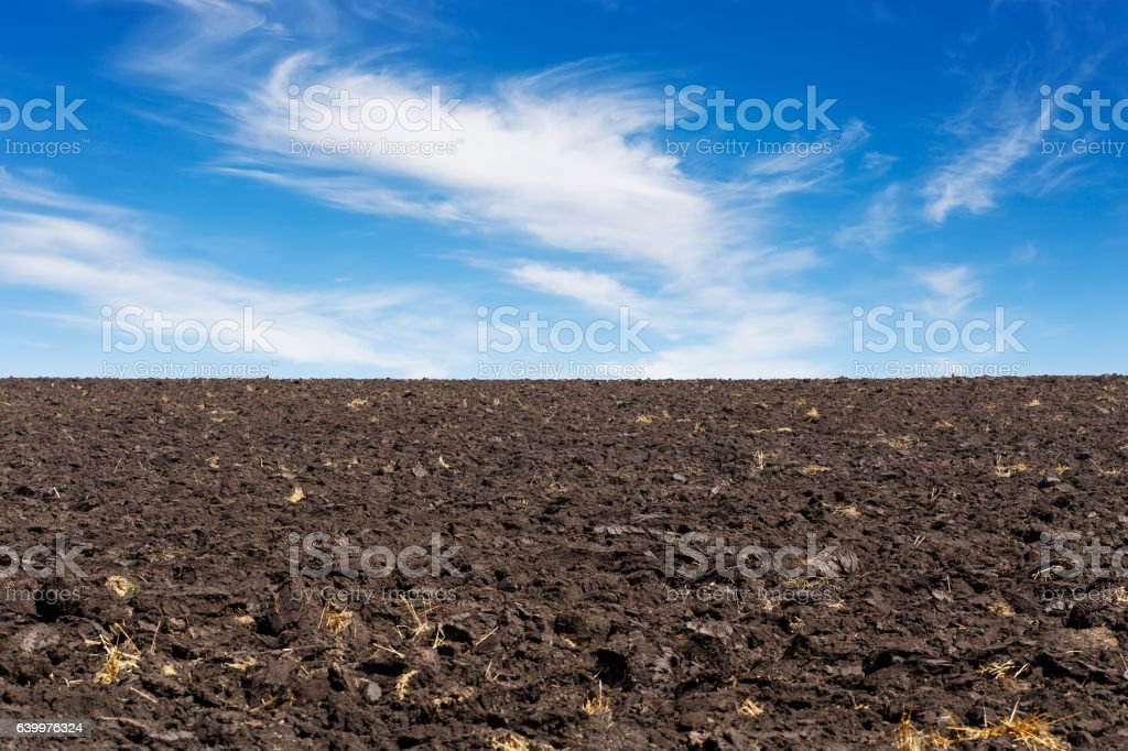 black field and blue sky stock photo