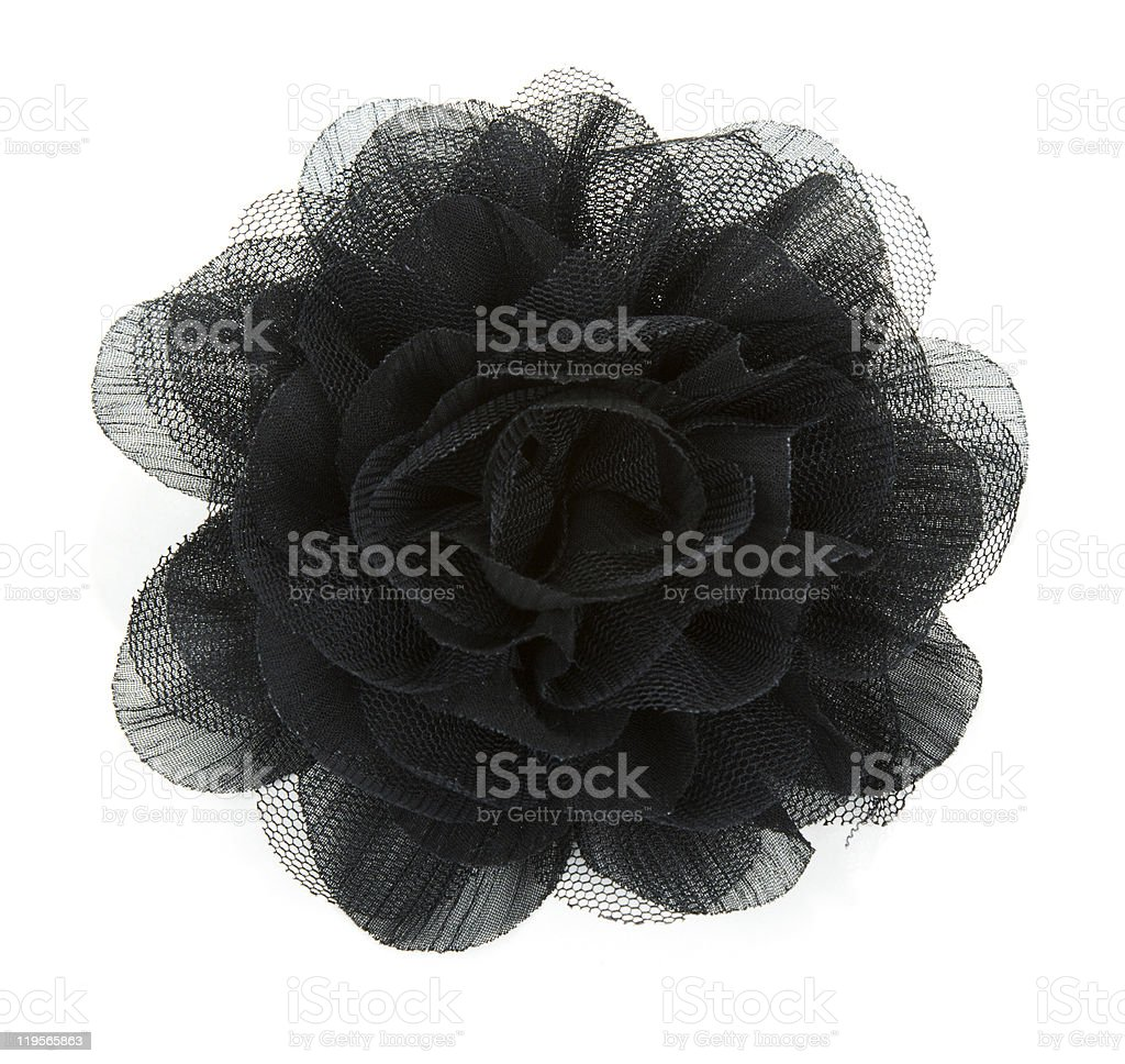 Black flower rose from lace royalty-free stock photo