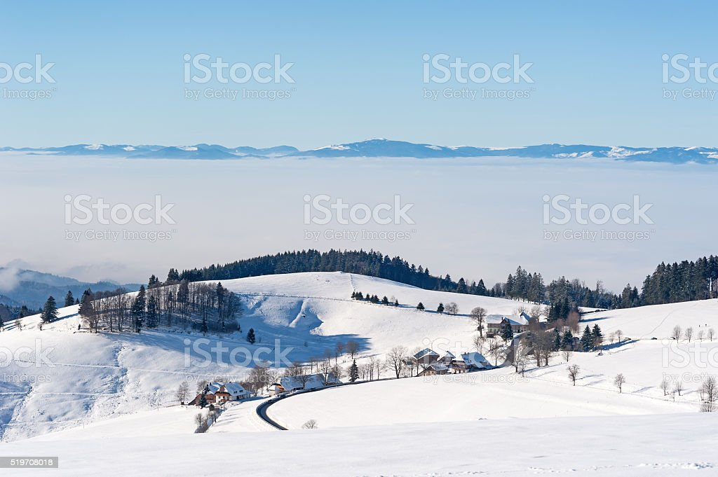 Black Forest in the Winter stock photo