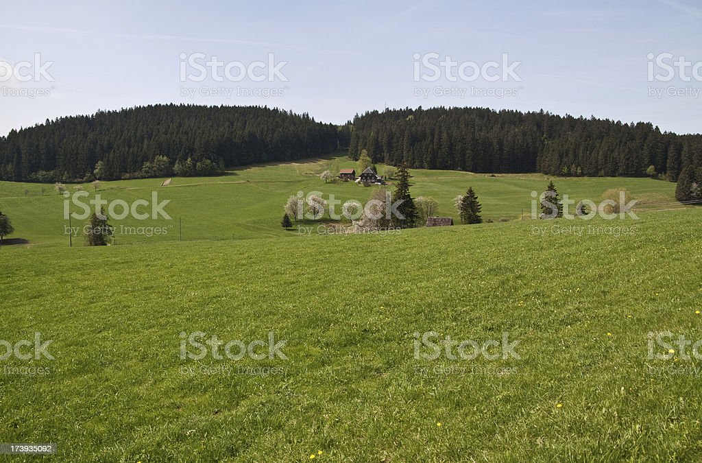 Black Forest landscape royalty-free stock photo