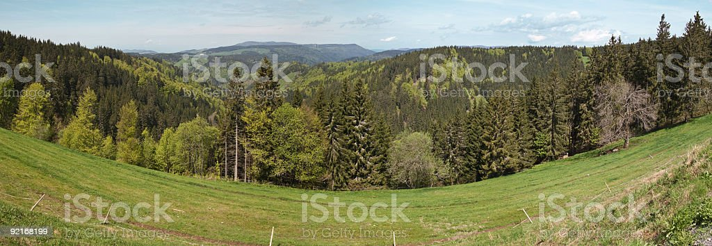 Black Forest ultrawide panorama royalty-free stock photo