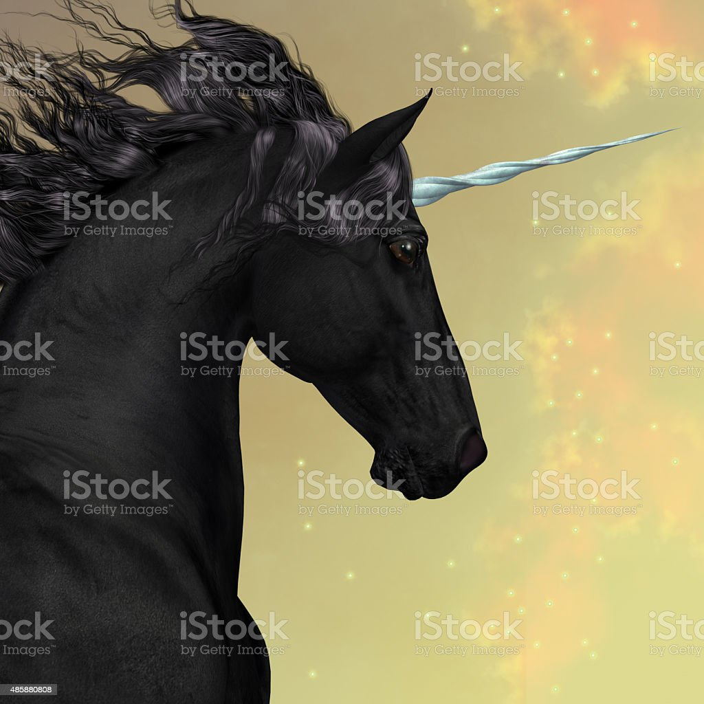 Black Friesian Unicorn stock photo