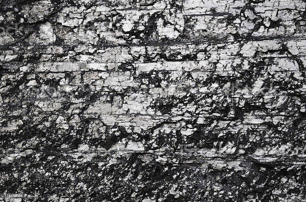 Black glossy coal background stock photo