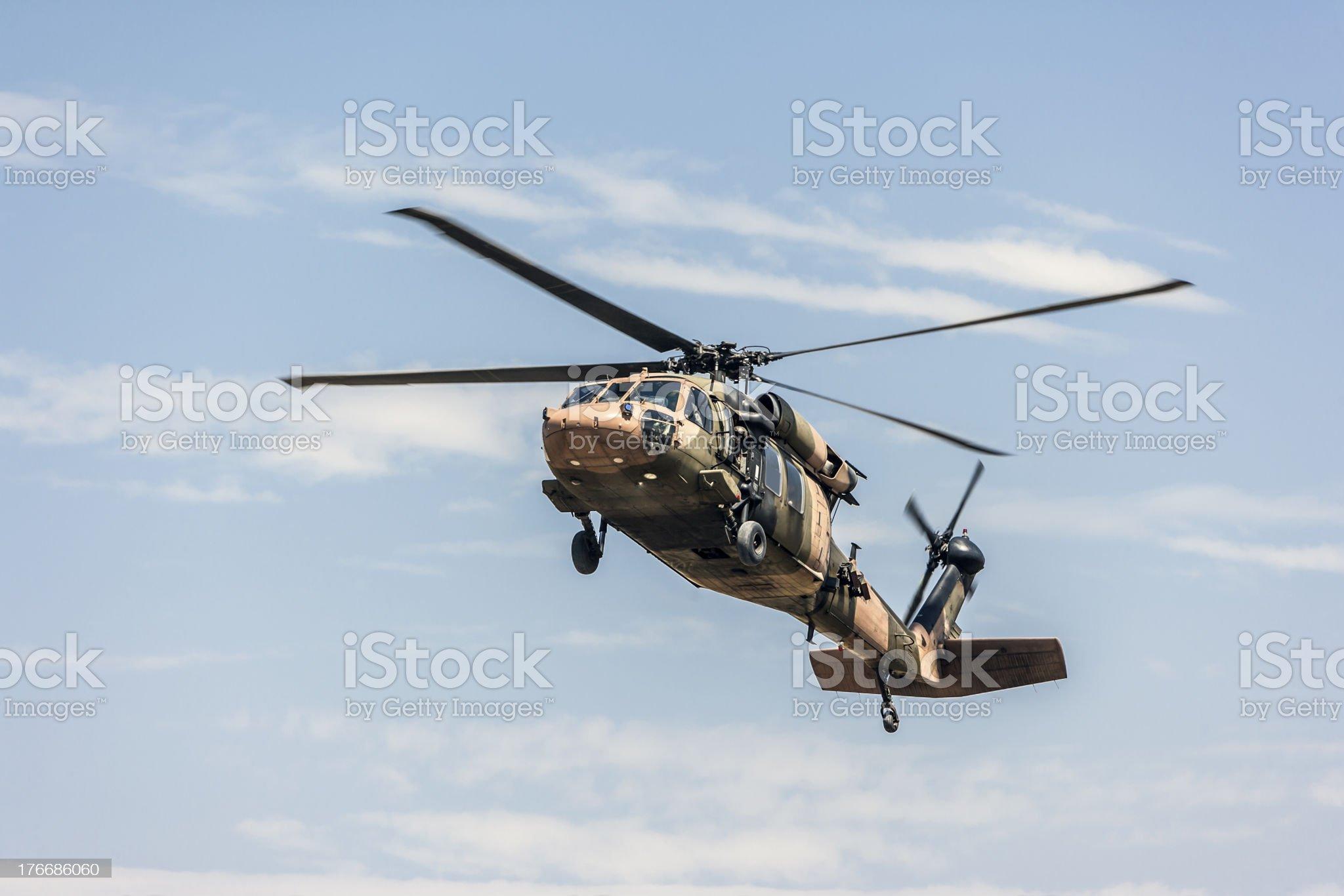 Black Hawk royalty-free stock photo