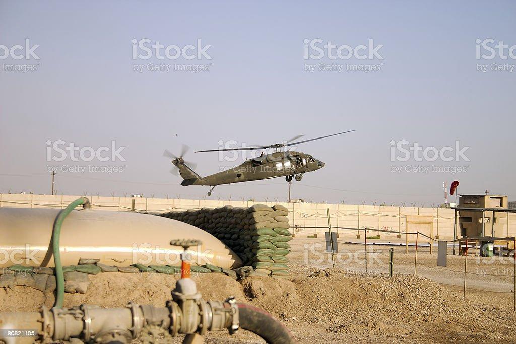 Black Hawk stock photo