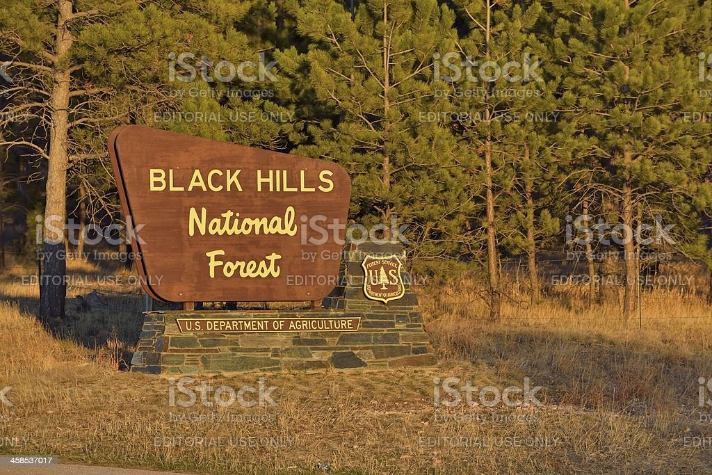 Black Hills National Forest royalty-free stock photo