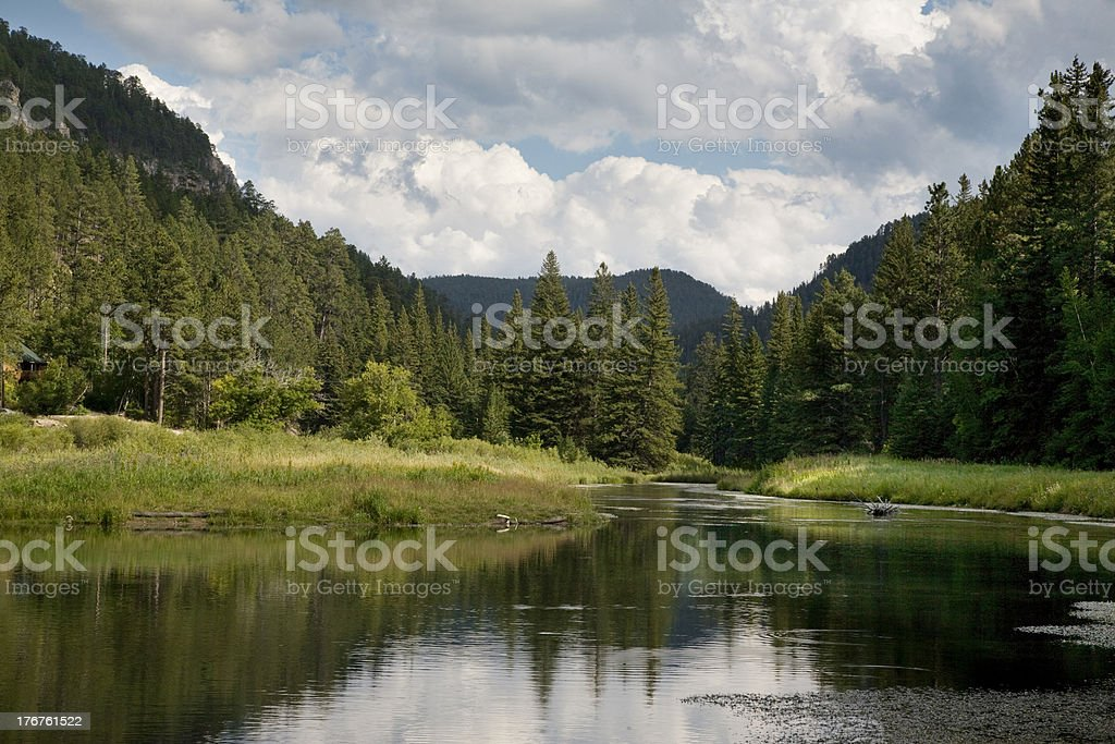 Black Hills trout stream stock photo