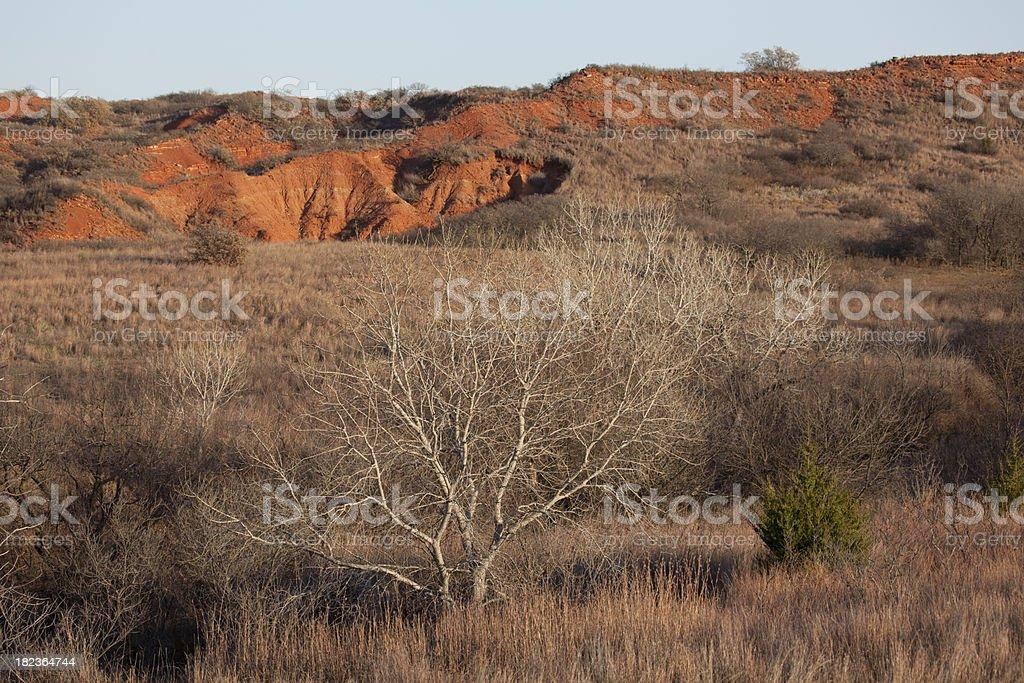 Black Kettle Wildlife Management Area in Oklahoma royalty-free stock photo