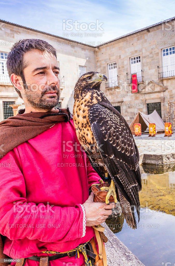 Black Kite (Milvus migrans) at the Roman festival in Braga stock photo