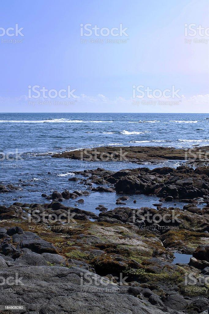 Black Lava Shoreline of Hawaii Vertical stock photo