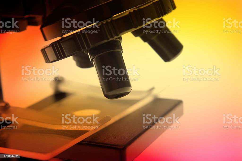 Black microscope checking a sample with 3 heads stock photo