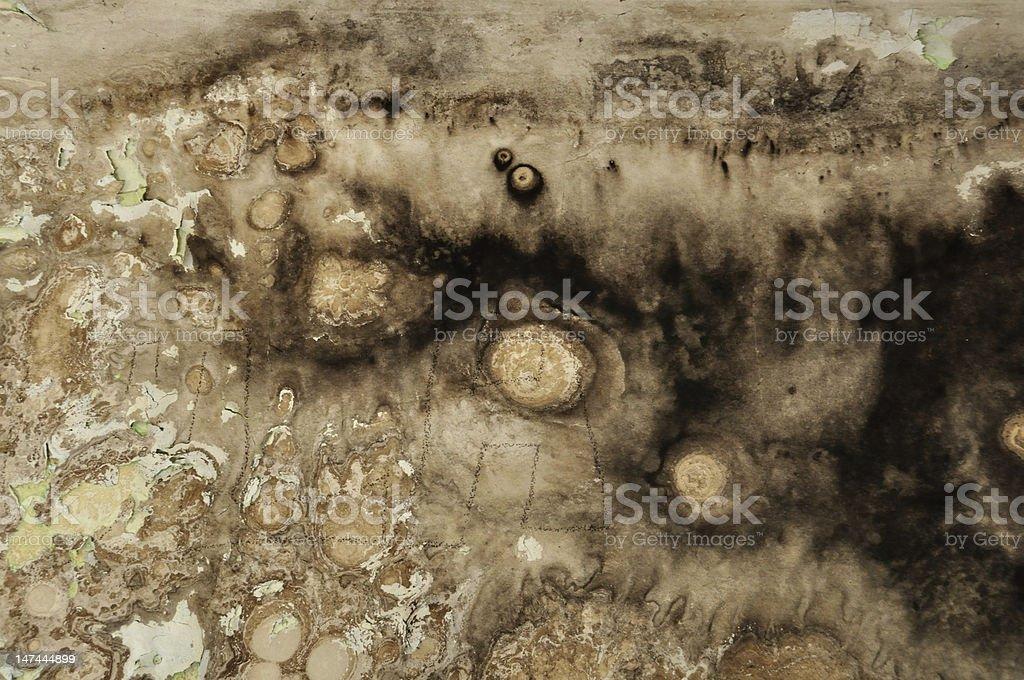 black mold grunge wall stock photo