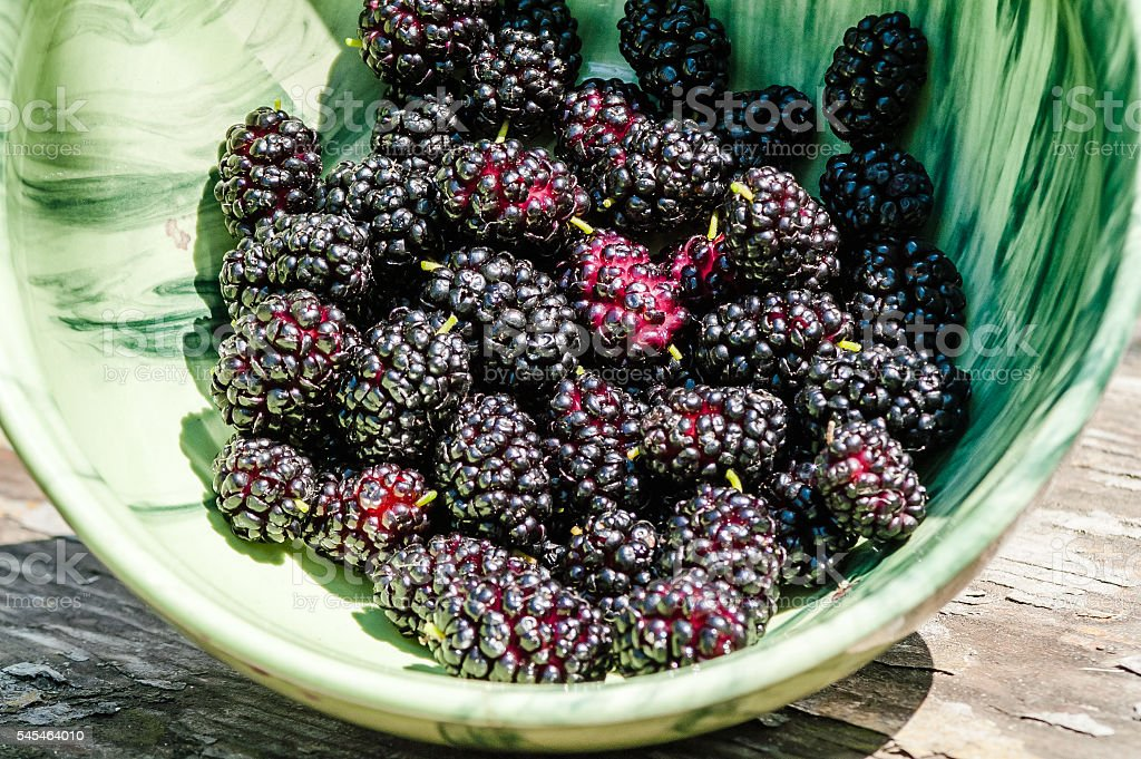 black mulberries in a bowl stock photo