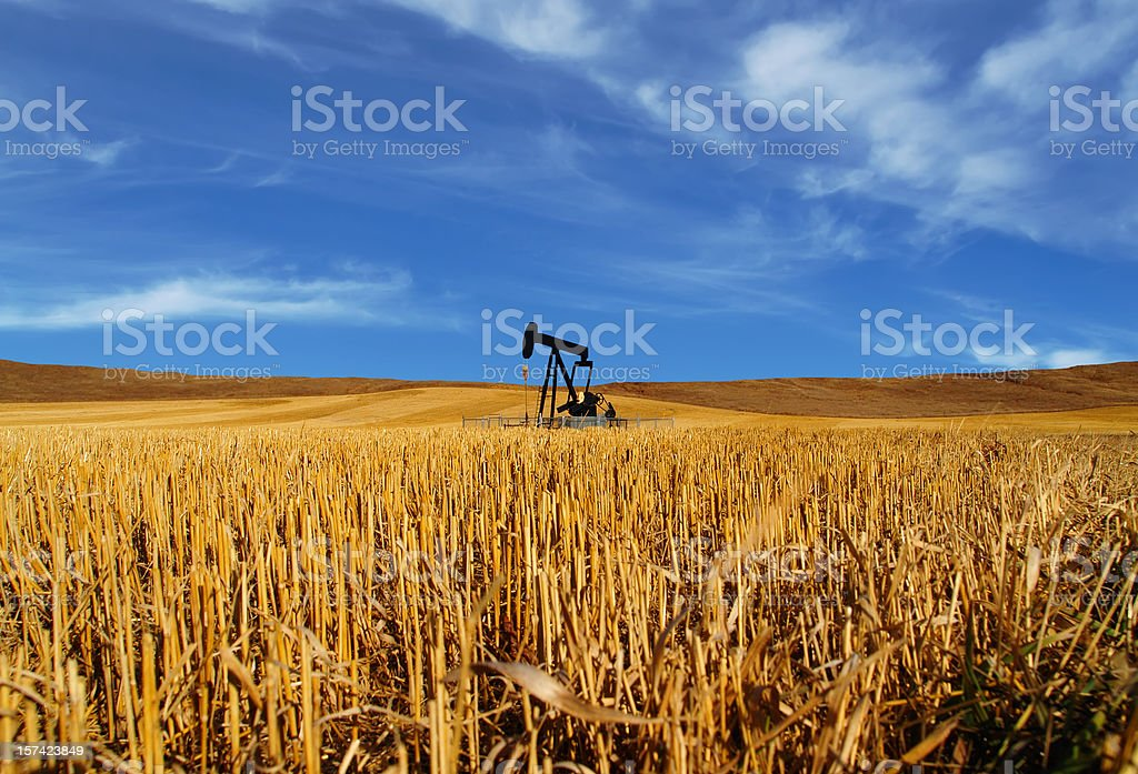 Black Oil Pumpjack in Field - Curly Clouds royalty-free stock photo