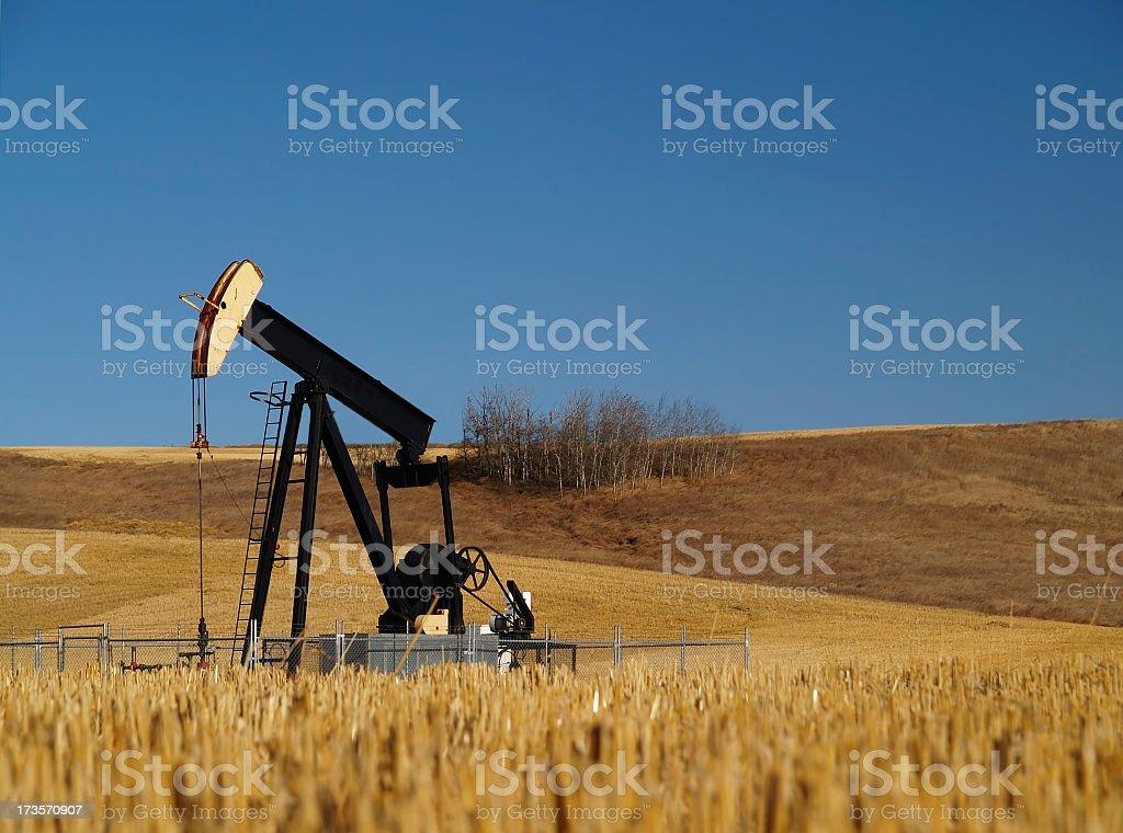Black Oil Well Pumpjack in Field stock photo