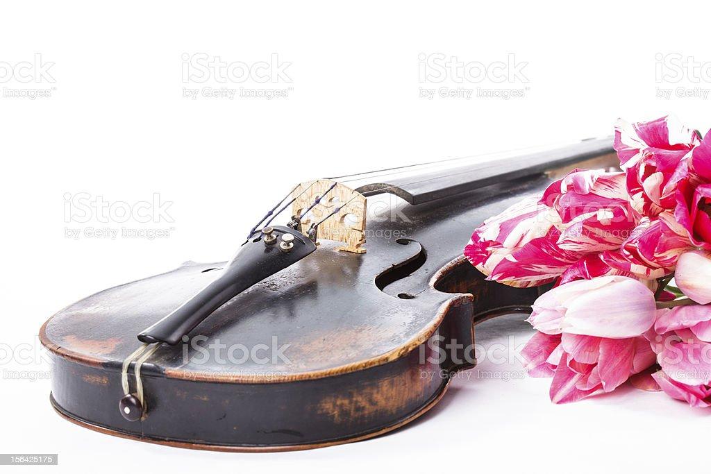 Black old violin royalty-free stock photo
