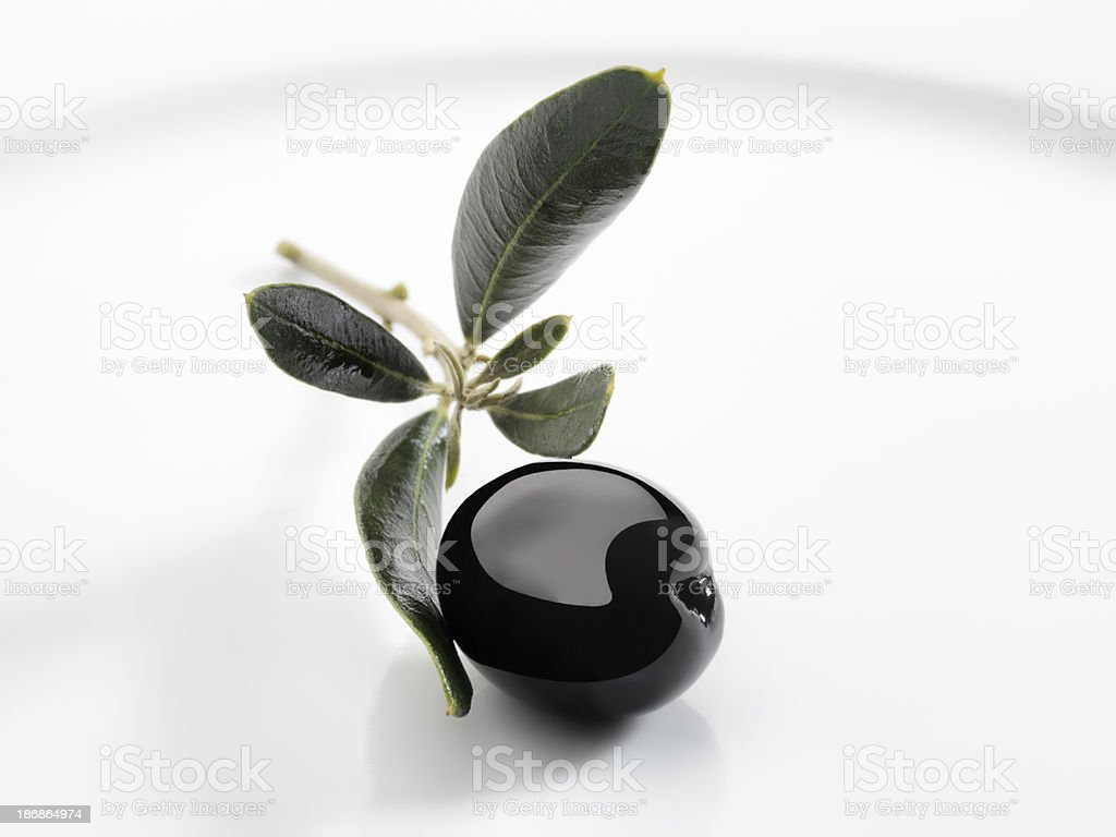 Black Olive royalty-free stock photo