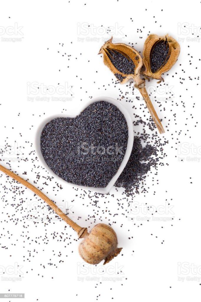 Black poppy seeds. stock photo
