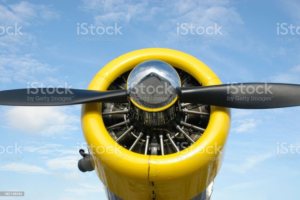 Black Propeller - Yellow Cowling stock photo