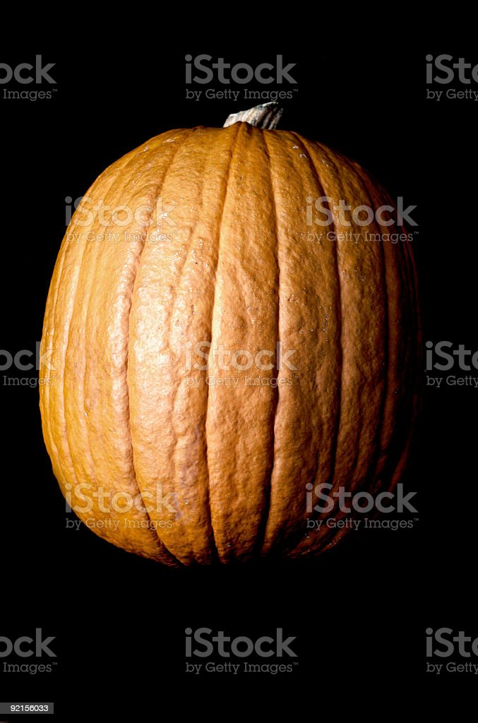 Black Pumpkin royalty-free stock photo