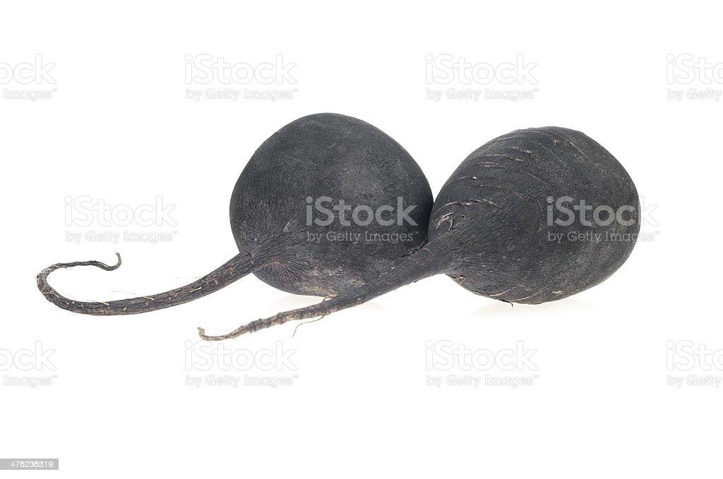 Black Radish, turnip, isolated on white royalty-free stock photo