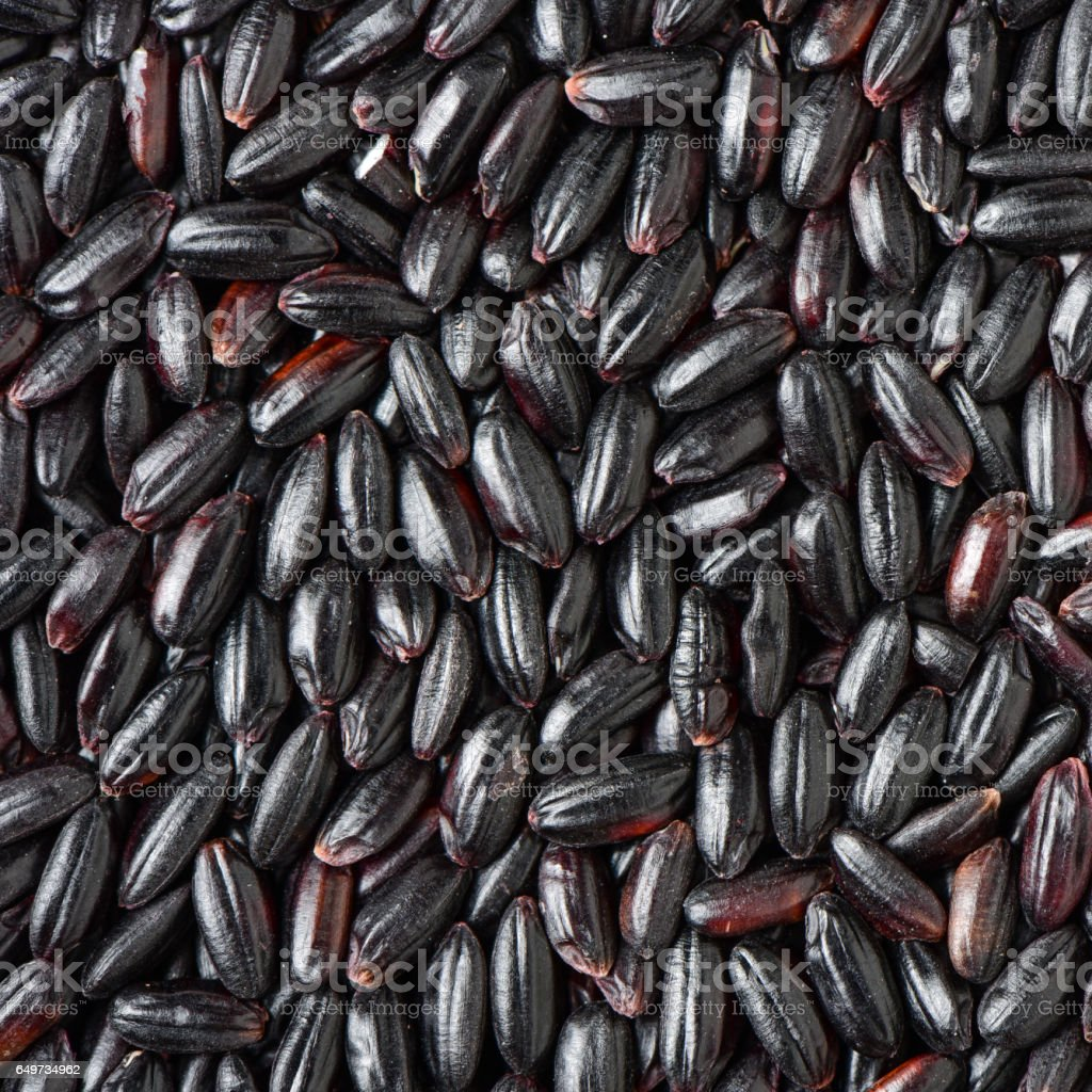 Black rice background stock photo