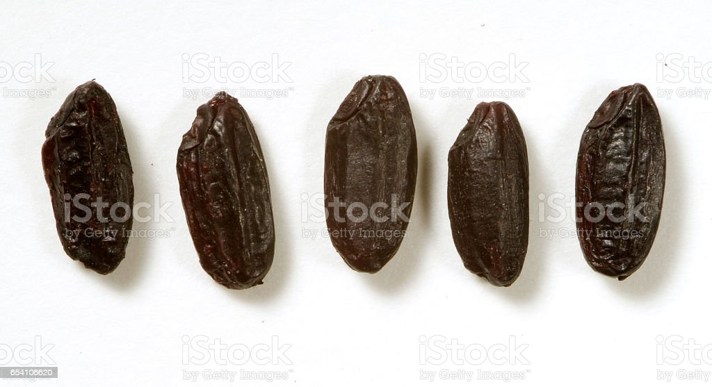 Black rice grains stock photo
