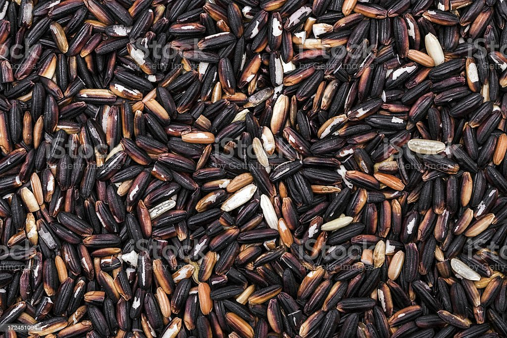 Black rice royalty-free stock photo
