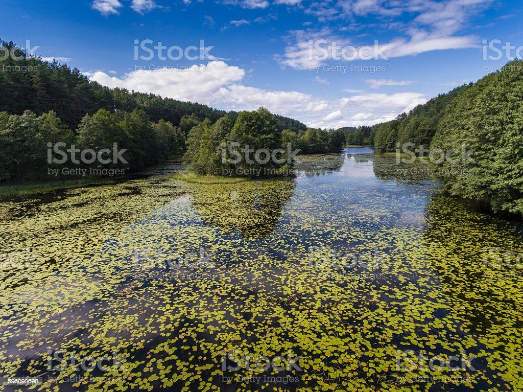 Black River Hancza in Turtul. Suwalszczyzna, Poland. stock photo