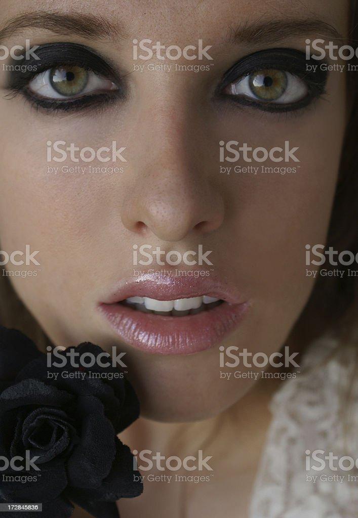 Black rose 2 royalty-free stock photo
