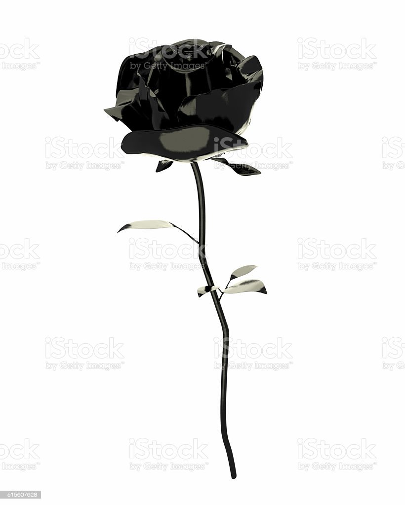 3D black rose isolated on white background stock photo