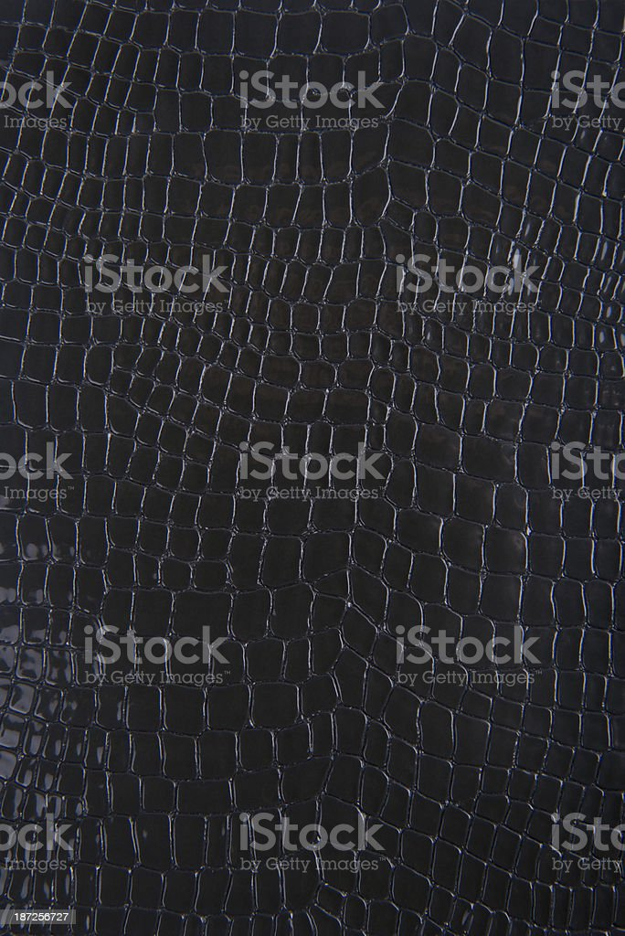 Black Snakeskin Or Crocodile Texture For Background stock photo