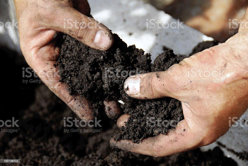Black soil in farmer hands stock photo