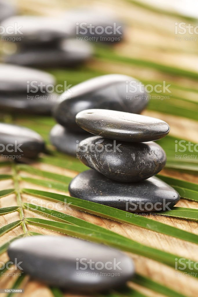 black stones and green leaf royalty-free stock photo