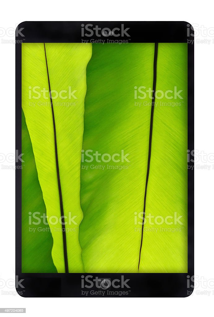 Black tablet PC with green leaf wall on white background stock photo