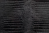 Black textured snakeskin paper