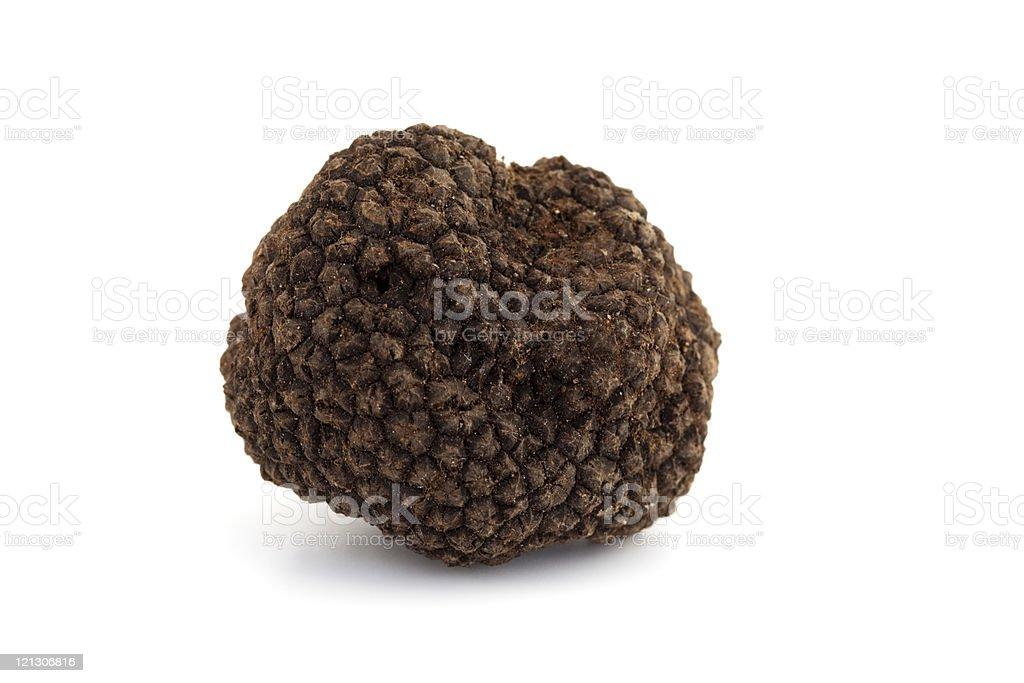 black truffle royalty-free stock photo