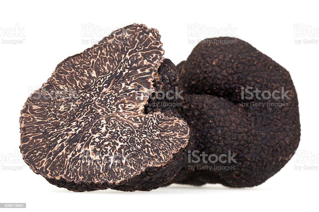 Black Truffle stock photo