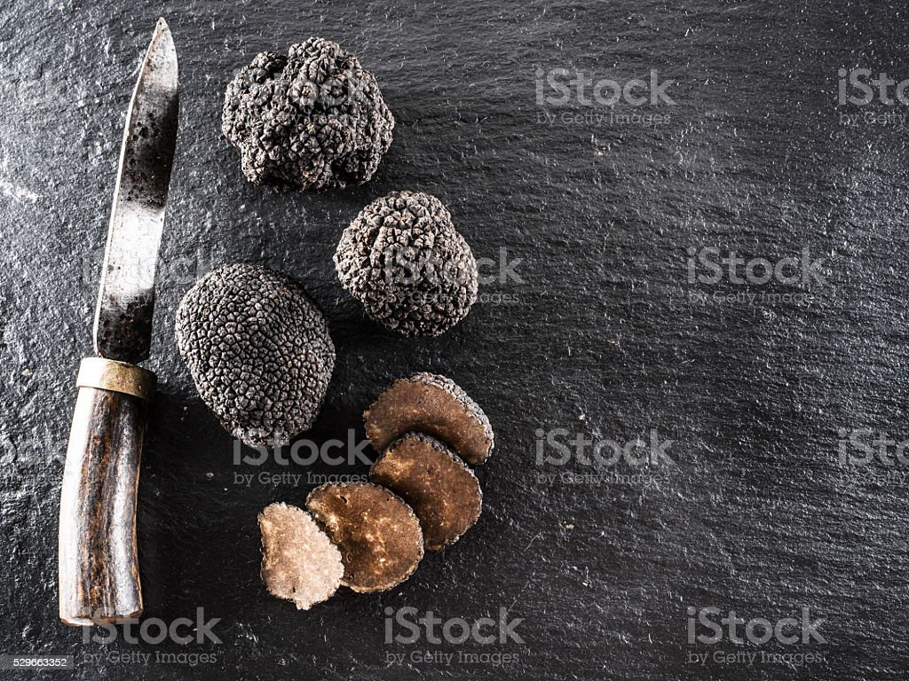 Black truffles on the graphite board. stock photo