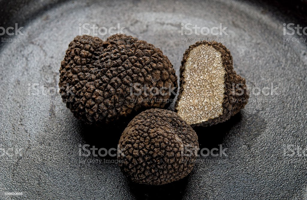 Black truffles stock photo