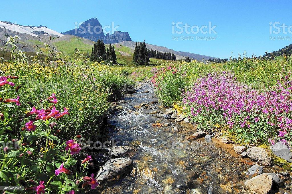 black tusk mountain garibaldi park near whistler stock photo