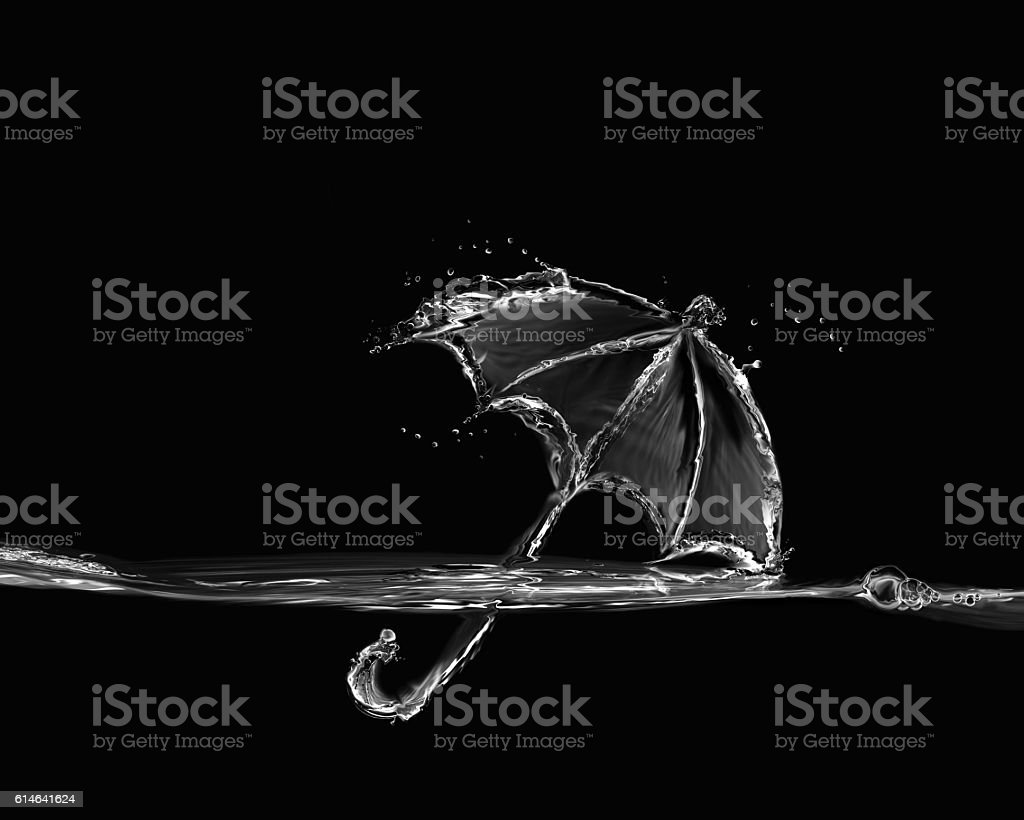 Black Umbrella royalty-free stock photo