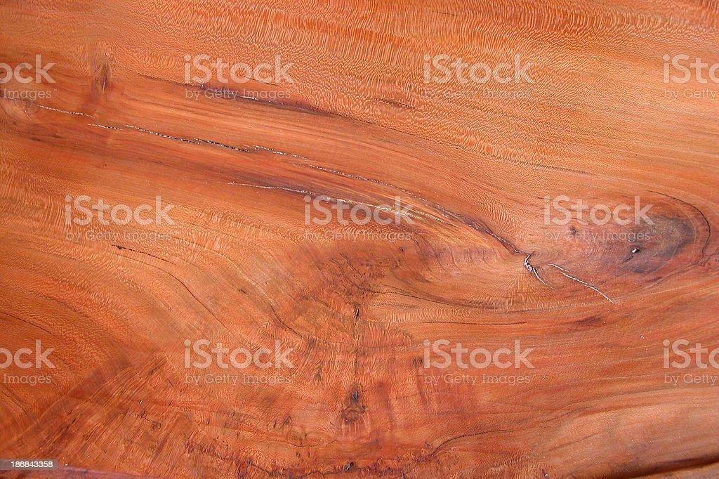 black walnut royalty-free stock photo