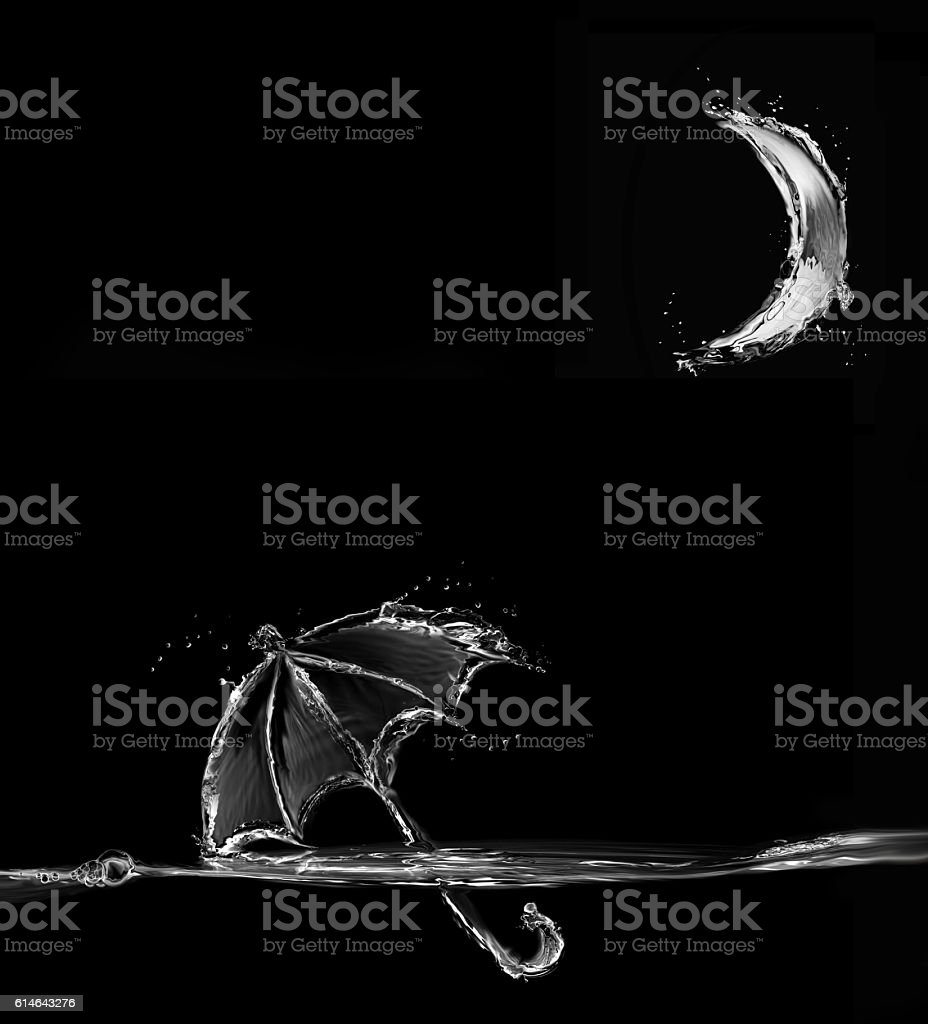 Black Water Umbrella in Moonlight royalty-free stock photo