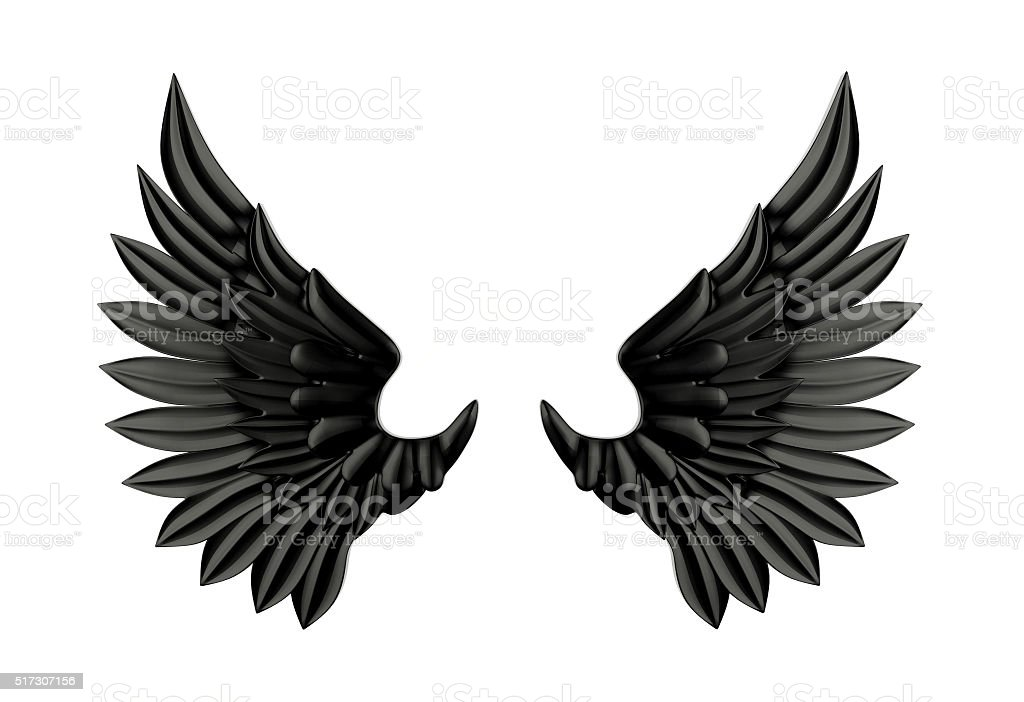 Black wing isolated stock photo