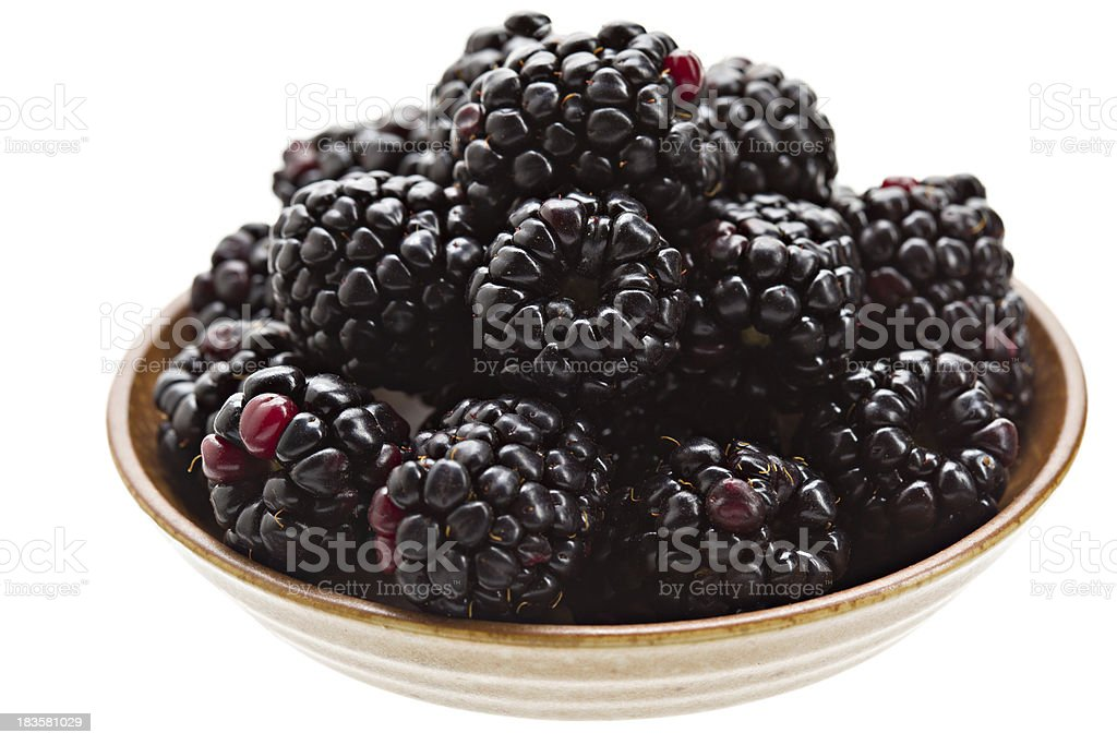 Blackberries In A Bowl Isolated royalty-free stock photo