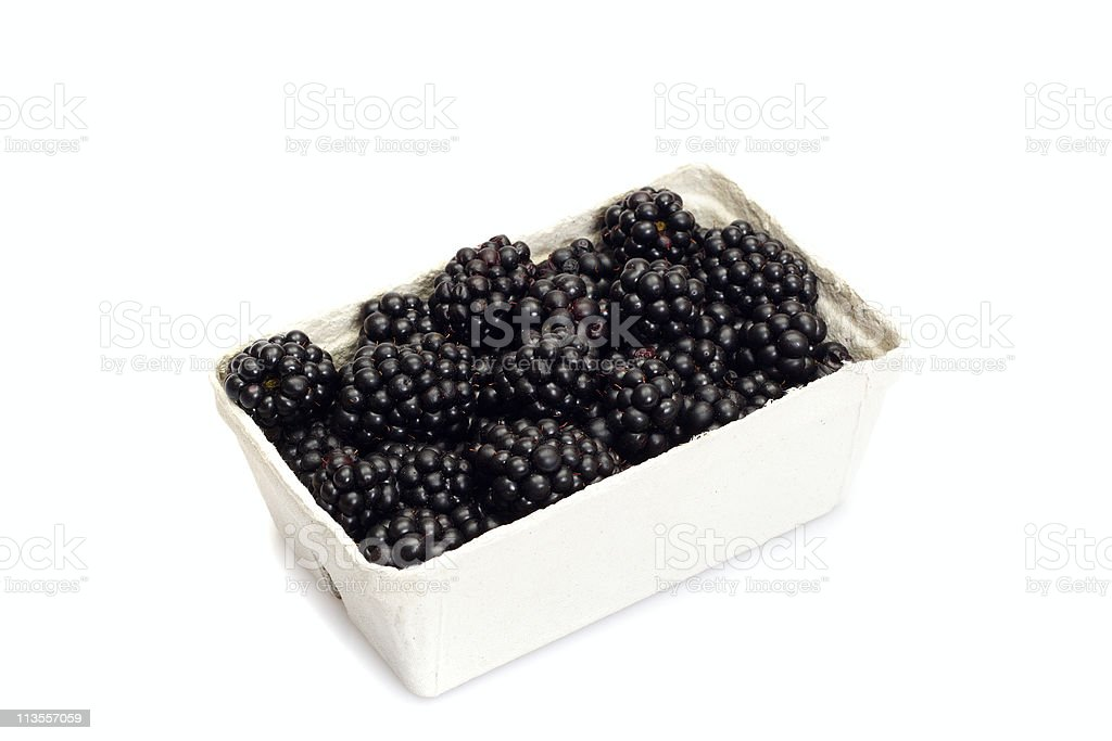 blackberries in a box stock photo