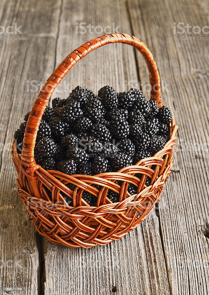Blackberries in basket royalty-free stock photo