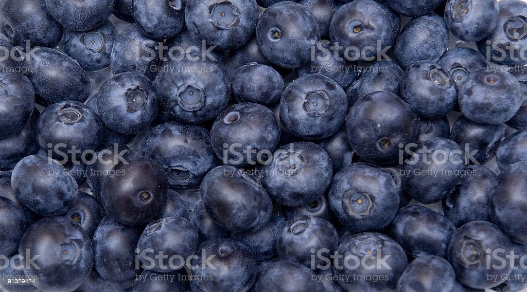 Blackberries royalty-free stock photo