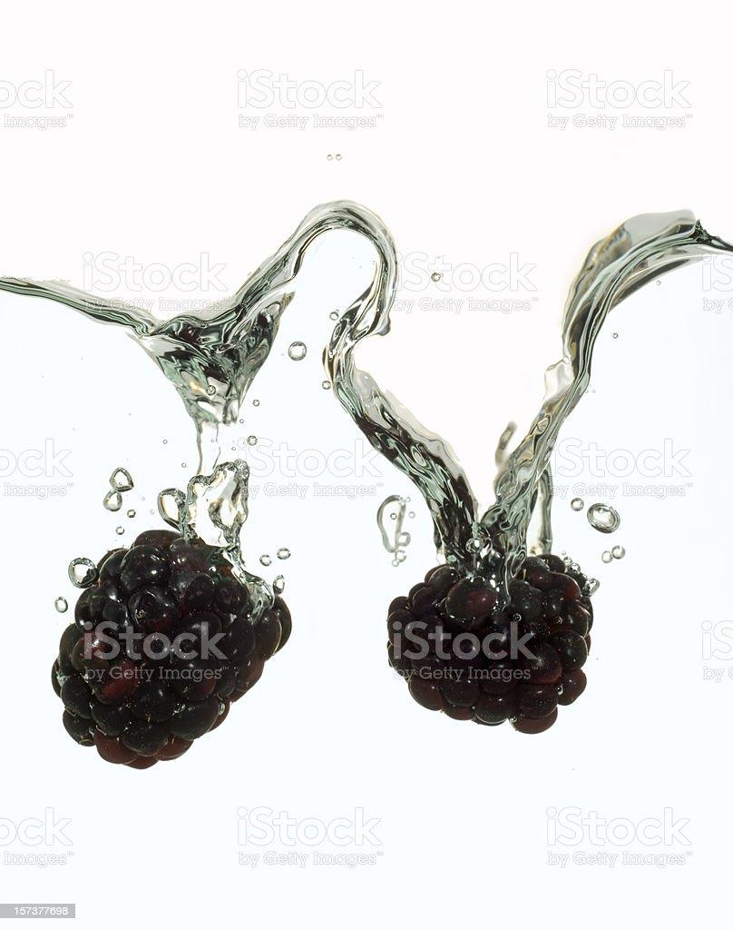 Blackberries splashing in water royalty-free stock photo